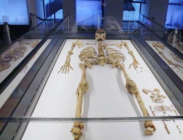 museo ostuni
