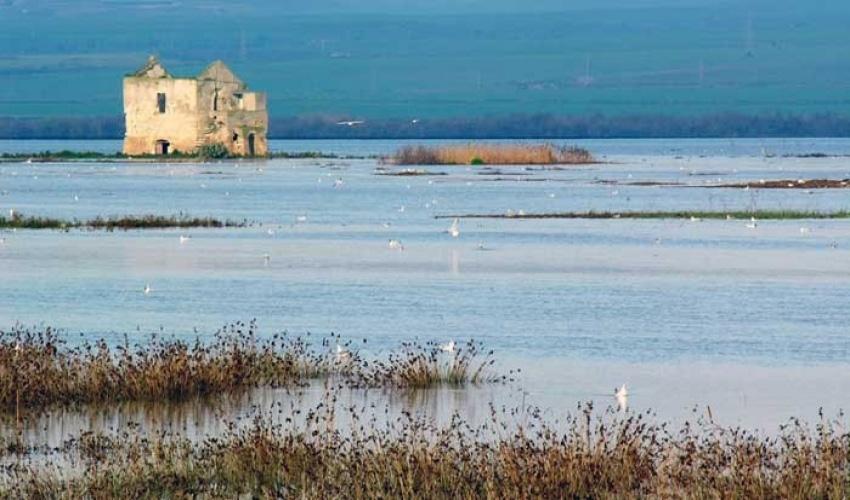 Saline e zone umide in Puglia